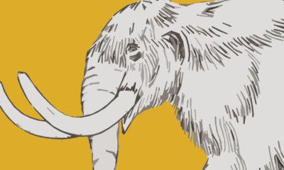 Výtvarná soutěž: Mamuti a dávnověk